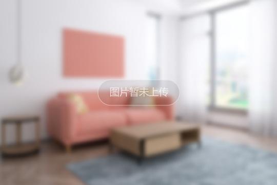 银桂苑 3室2厅 带车库附房 豪装自住 性价比高