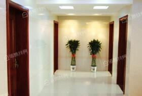 (个人满5唯一)外滩北苑 三室两厅两卫 电梯 户型好 阳光好