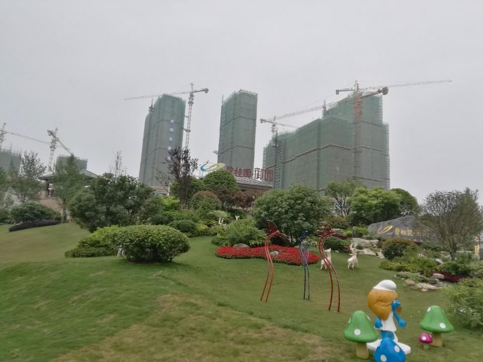 碧桂园御园