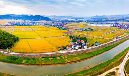 2018年市场总结报告——土地篇:土地供需上涨难阻市场走入低迷