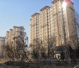 """深圳""""史诗级""""土拍:房企顶价抢地竞配建,未来可供给5-6万套刚需住房"""