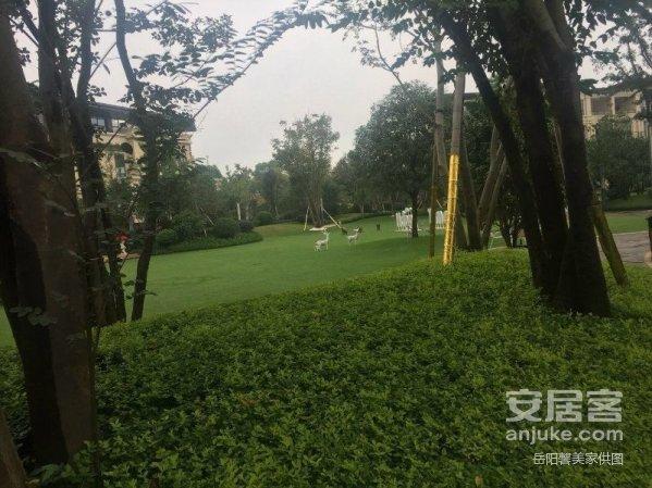 岳阳楼高端别墅群超11赠。送面积大花园自然环境优美