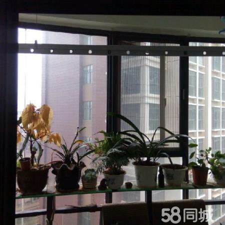 金湖尚城经典公寓两室+精装修+电梯房+一次性付款出售