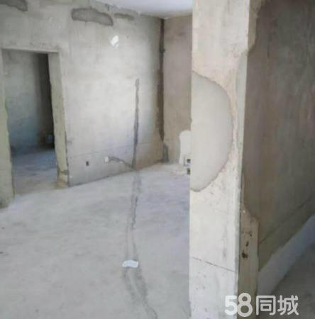 R政法小区1复式260平车库40平60万