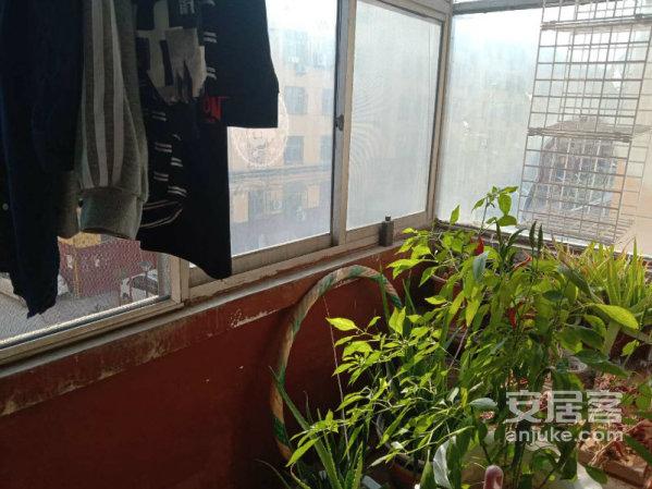 阳光小学妇幼火车站香江附近湖北小区免大税