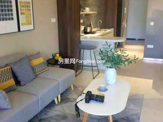 绿地广场买买公寓维也纳酒店托管即买即租每月租金2400起