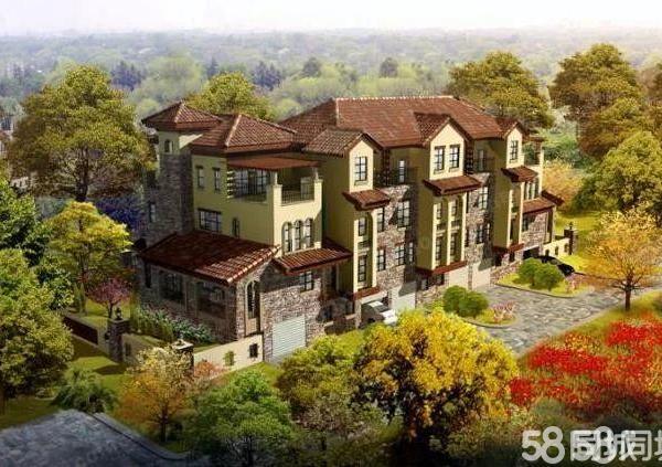 开发区大禹塞维利亚别墅急于出售只限113万先到先得