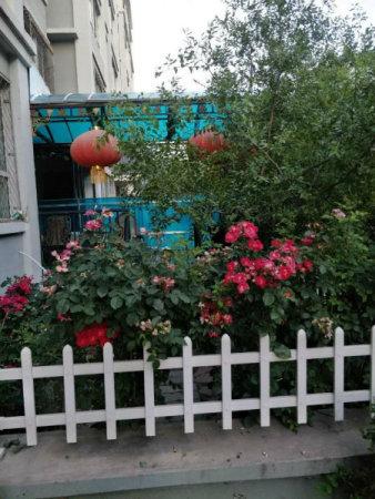 假日风景一期一楼带花园22中22小交通便利