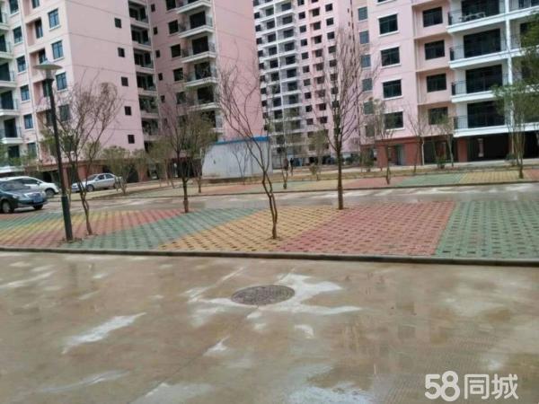 城西平桂公务员小区151平米4房首付25万