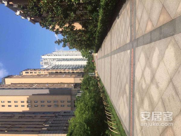 江东福明二小旁城市空间215万业主婚装二十万急售次新小区