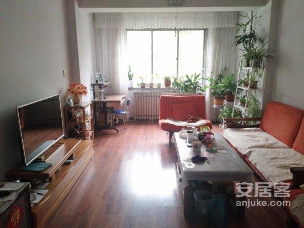 七里河西津西路兰通厂家属院经典希缺好房4楼可按揭