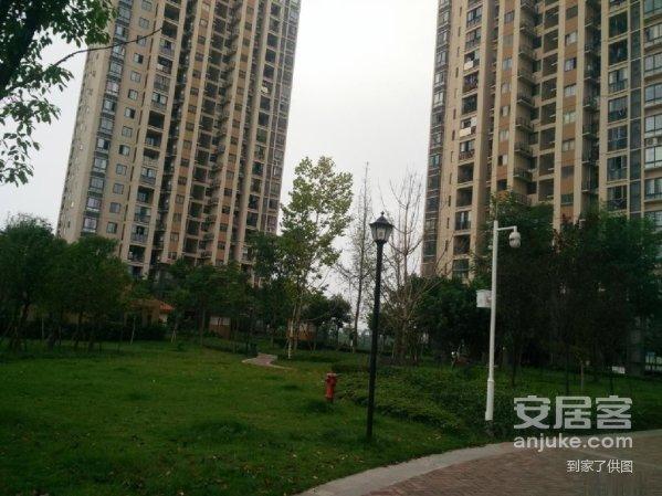 银翔城双名校指标低总价低首付刚需自住买到赚到