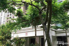 中骏裕景湾 自住精装修3房 200平大露台 证满省税钥匙在手