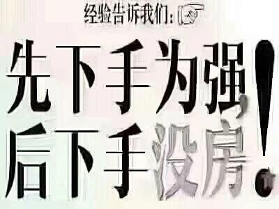 新区滨江凯旋门一线江景南北向H户型