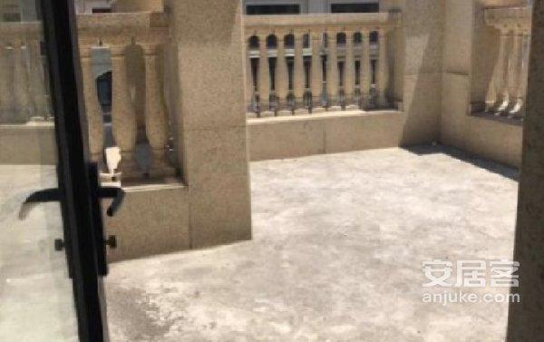 盛世缔壹城一期全新白坯花园洋房顶十阁实用面积220平看房方便二手房