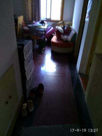 明楼东区3楼3室1厅干净装修位置好客厅有窗二手房