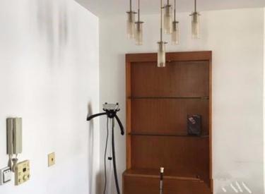 天龙家园1室1厅1卫67㎡二手房