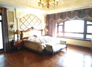 碧桂园豪装570米别墅证件齐全赠送家具二手房