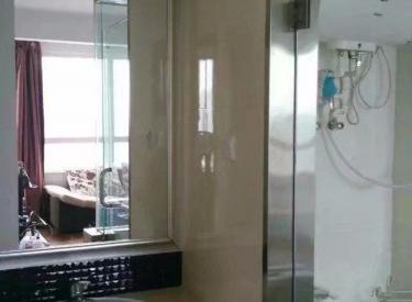 新加坡城1室1厅1卫54.00㎡二手房