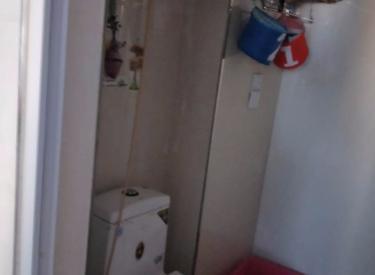 泰莱16区1室1厅1卫45.00㎡二手房