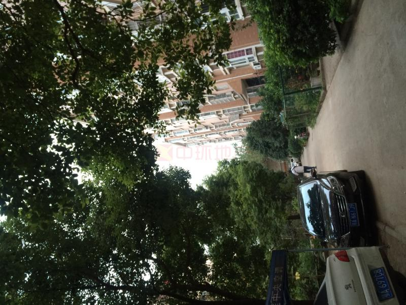 武昌区新鑫佳苑4室2厅,二手房
